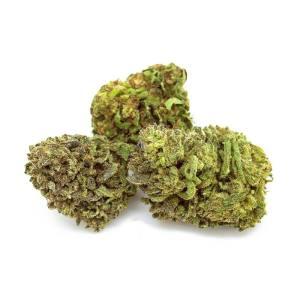 Vendita Marijuana Light - Come Distinguere le Offerte Migliori.